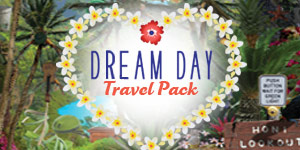 Dream Day Travel Pack