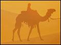 Egypt Picross - Pharaoh's Riddles Deluxe