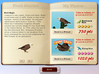 Snapshot Adventures - Secret of Bird Island screenshot 1