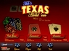 Texas Hold 'Em screenshot 6