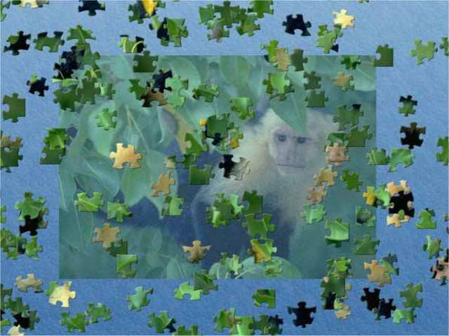 Play Jigsaw Puzzle Golden Edition