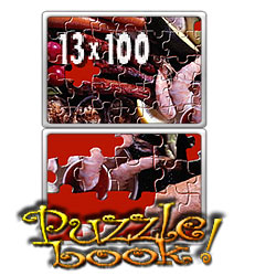 Puzzle Book